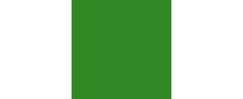 Grüneshaus.com